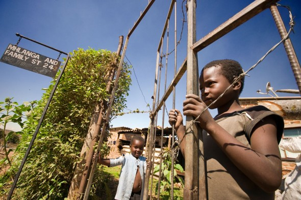 Boys look out from behind a gate in an IOM-built community outside Mutare, a MDC (Movement for Democratic Change) stronghold near the Mozambican border.