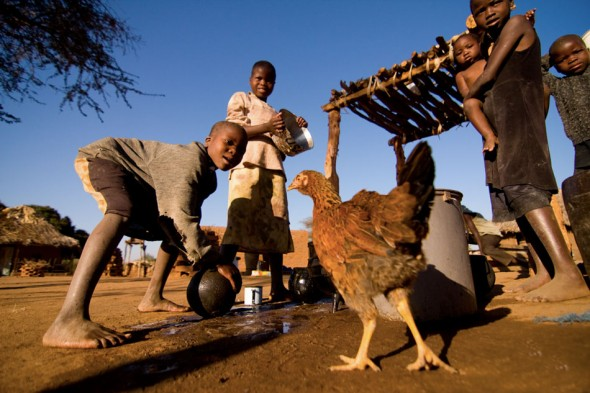 Photo © Will van Engen / International Organization for Migration.