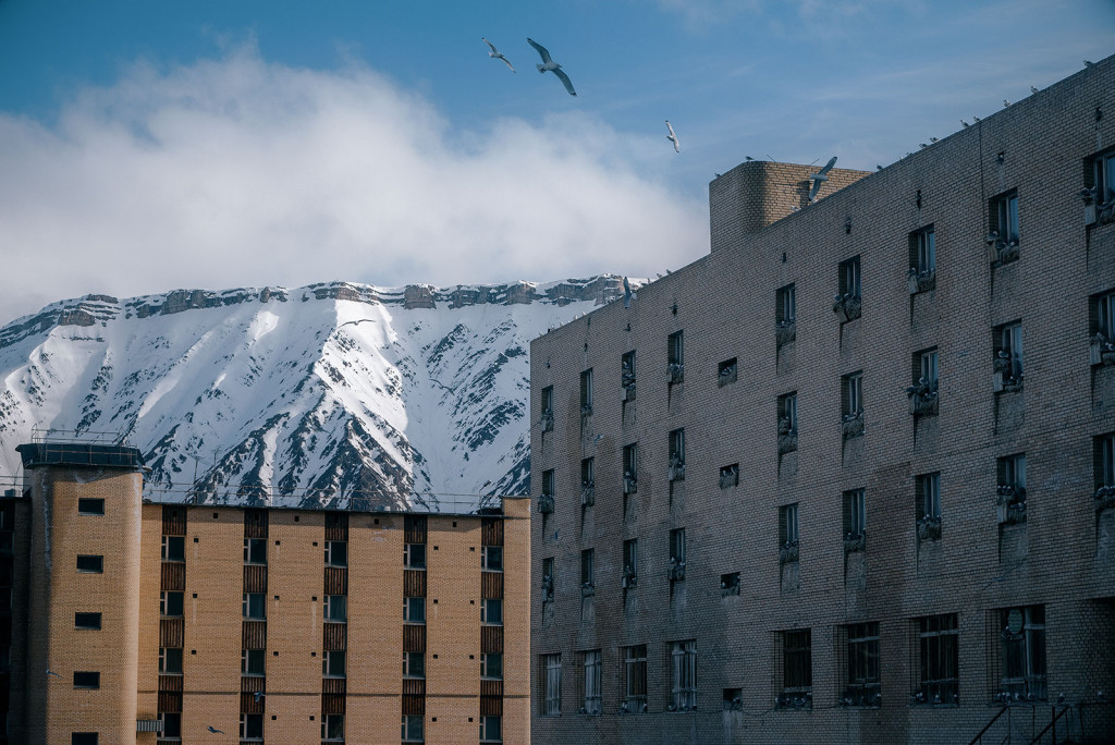 Bird Castle: