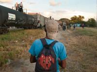 Migration II: Boarding the Beast