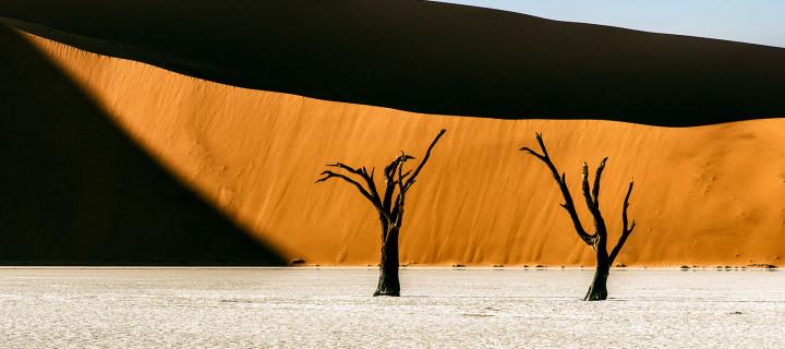 Desert Sundials